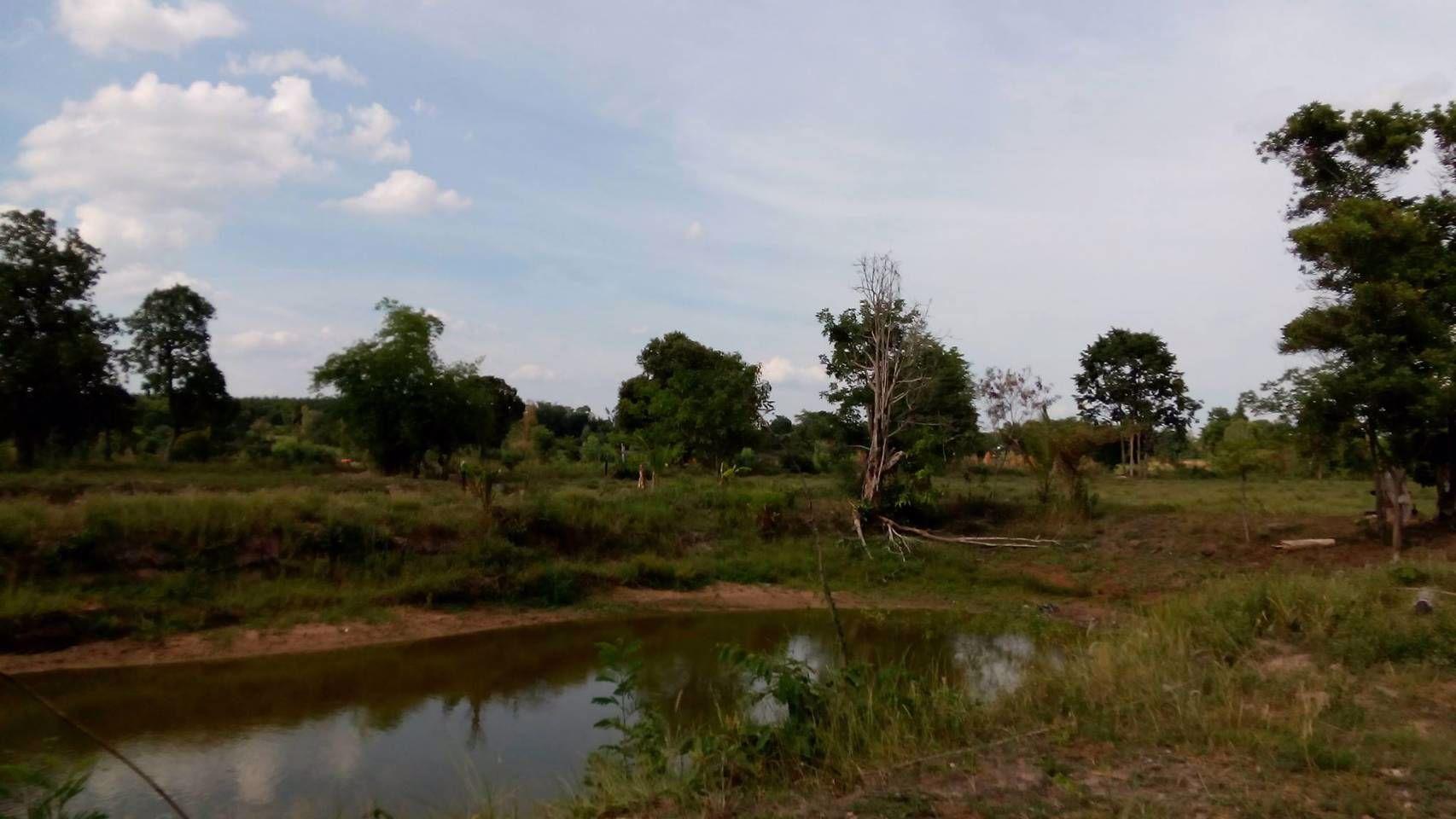 ขายที่ดินตรงข้าม-นพค26-ติดคลองชลประทาน-มีน้ำใช้ตลอดปี-อพรรณานิคม-จสกลนคร